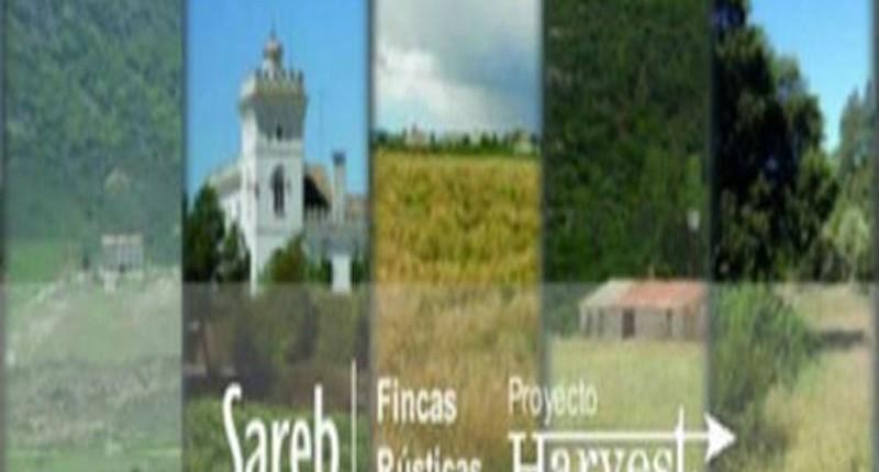 El Proyecto Harvest de la SAREB